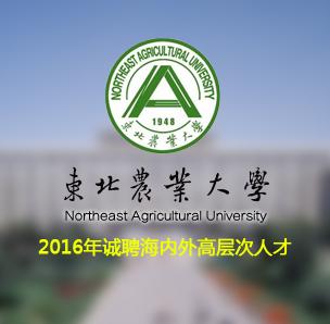 东北农业大学2016年诚聘海内外高层次人才