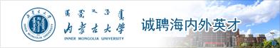 内蒙古大学2021年诚聘海内外英才(中英文版)